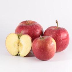 Pomme Esltar